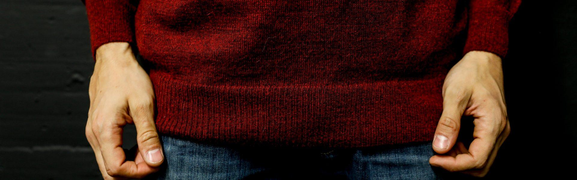 alt+baby alpaca sweater men